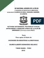 FIA-181.pdf
