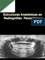 EstructurasPanoramicas.pdf