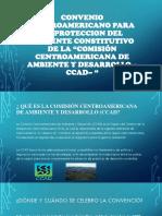 Convenio Centroamericano Para La Proteccion Del Ambiente Constitutivo