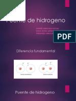 Puente de Hidrogeno (1)