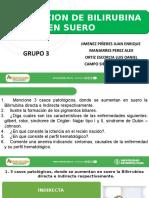 1556563370939_0_Bilirrubina, Grupo 3