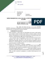 Modelo Informe Escrito