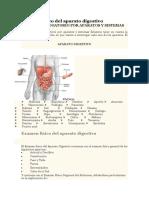 Examen físico del aparato digestivo.docx