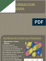 transformacion bacteriana