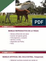 18 - Manejo Reproductivo de La Yegua