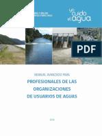 Manual Profesionales