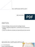 Lesiones Del Cartílago Articular I