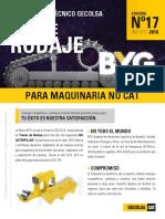 Comunicador_Tecnico_BYG_17.pdf
