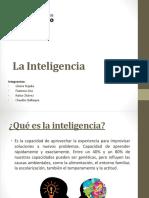 La Inteligencia Expo