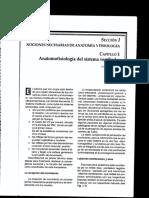 libro neurootologia