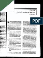 capitulo 2 anatomia vascular del laberinto.pdf