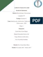 Consulta 1 Identificación, Clasificación y Tipificación Bacteriana.cultivos Puros,PCR
