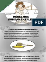 Derechos Fundamentales Mecanismos