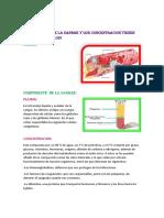 Componentes de La Sangre y Que Concentracion Tienen Cada Una de Elloss