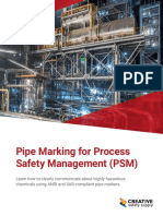 Guide PipeMarkingforPSM