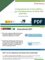 Consultoria TSP Proceso NDT Peru