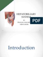 Hepatobilliary