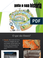 Aula de Fósseis