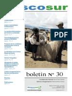 descosurN30.pdf