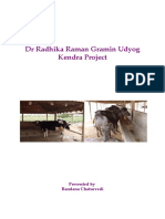 100 Cows PROJECT REPORT FOR DAIRY FARMING.doc