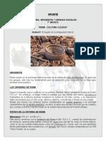 APUNTE__ROMA__CULTURA_CLASICA_60576_20170120_20151123_182906