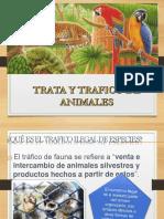 Trata y Trafico de Animales