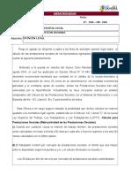 CORREGIDO - consultoria juridica.doc