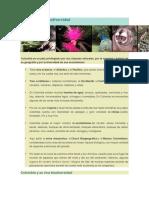 Colombia y Su Biodiversidad