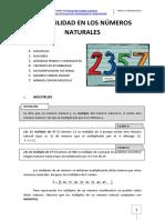 Resumen Divisibilidad Numeros Naturales