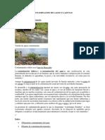 Contaminacion de Lagos y Lagunas