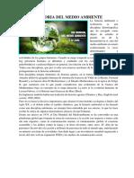 Historia Del Medio Ambiente