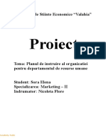 Proiect Elena