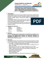 TDR Expediente Tecnico Agua Potable Oyocchuacho