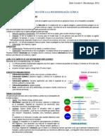 Resumen Micro PEP 1 (1)