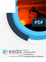 Master Petroleo Gas Prospeccion Transformacion Gestion