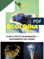 ecologia 9