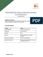 Programa Dirección Profesional de Proyectos