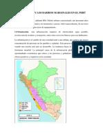 Urbanización y Los Barrios Marginales en El Perú