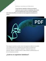 Microorganismos Fastidiosos Crecientes en El Laboratorio