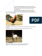 Animales Con Su Nombre en Ingles Abecedario
