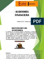 Auditoria Financiera y Nagas