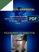 Picaduras Por Insectos ,Anafilaxia
