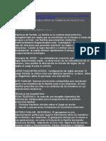 APORTACIONES DE SELVINI P A LA SISTEMICA.doc