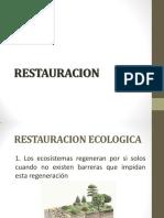 Revegetalización.pdf