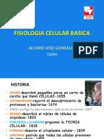 1.Fisiologia Celular Basica