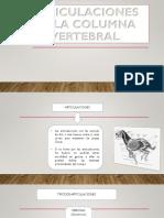 Anatomia Articulaciones