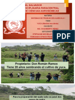 PresentaciónSPAA.pptx