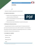 Informe Mecanica de suelos