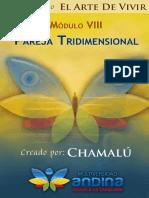 08 - Pareja Tridimensional