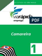 Camareira 1.pdf